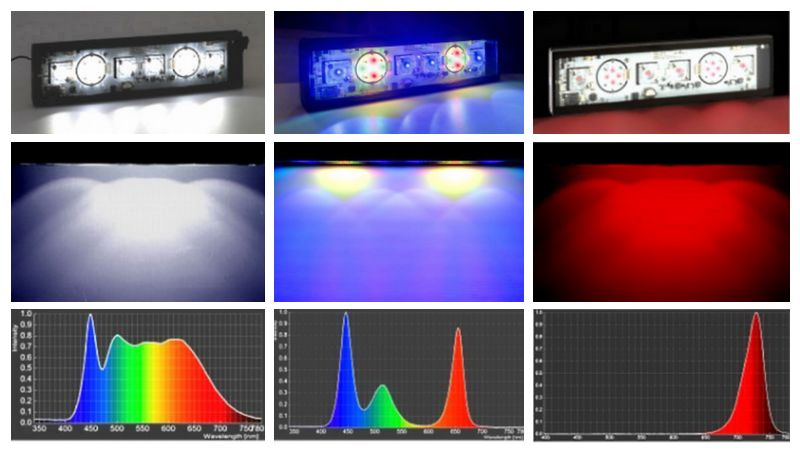 New led mrt mozeypictures Gallery